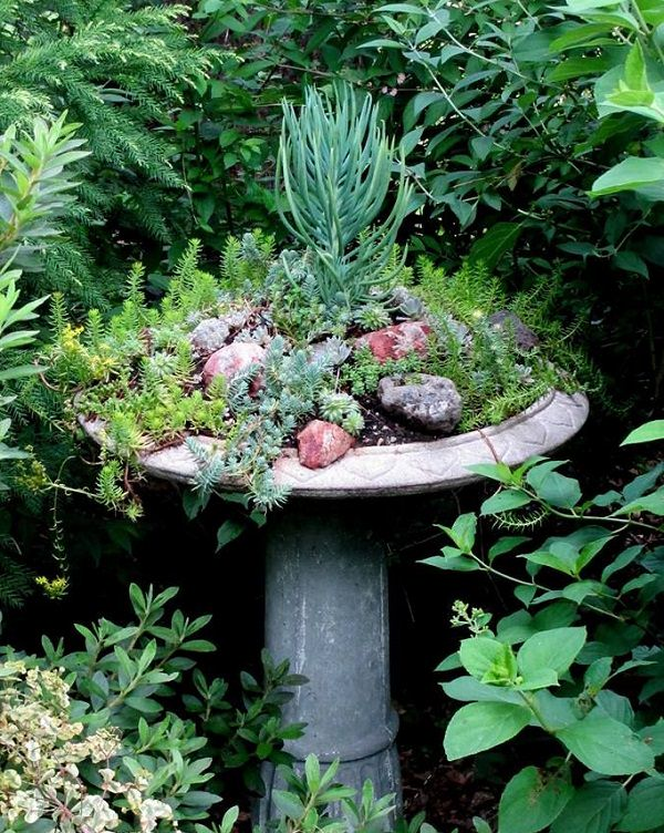 37 Most Beautiful Succulent Container Garden Diys With