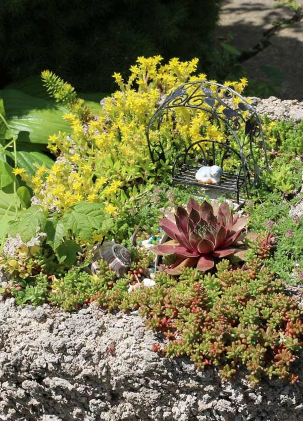 Lightweight And Rustic, Hypertufa Planters Are Just The Right Type Of  Containers For Kick Starting Your Succulent Container Garden Project, ...