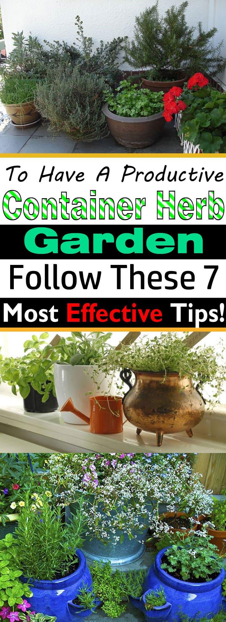 7 essential container herb garden tips growing herbs in pots pin it if youre growing herbs in pots workwithnaturefo
