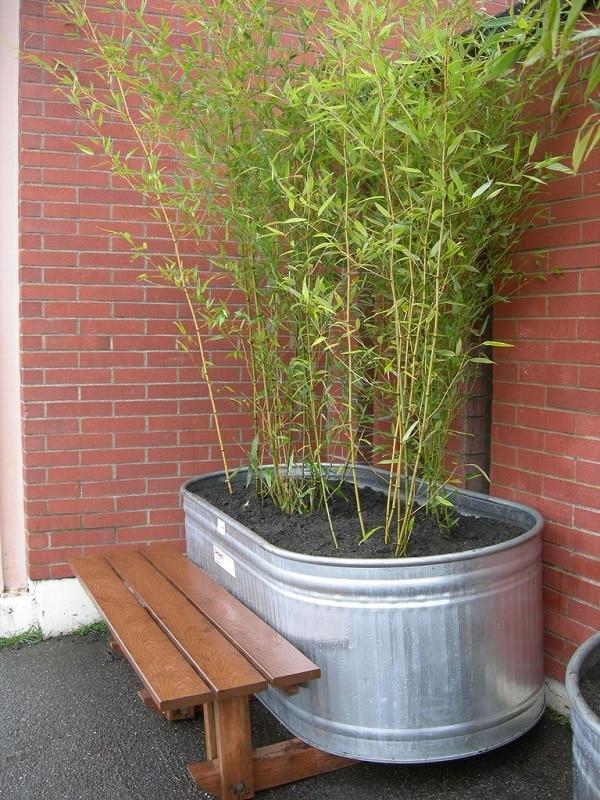 18 Unimaginable Galvanized Tub Uses In The Garden
