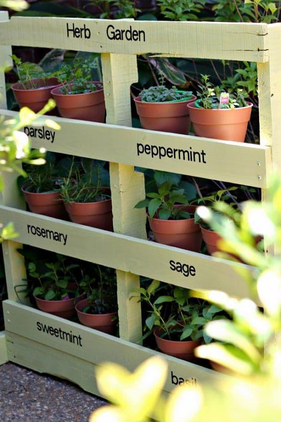 Grow More Plants Indoors, Follow 16 Best DIY Vertical Pallet Garden ...
