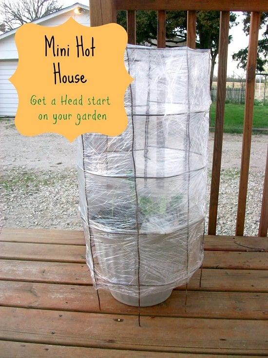 43 budget friendly diy greenhouse ideas balcony garden web a hothouse is used to lock the heat around the plants you can make a similar one for yourself like above using the tomato cage get the details here solutioingenieria Image collections