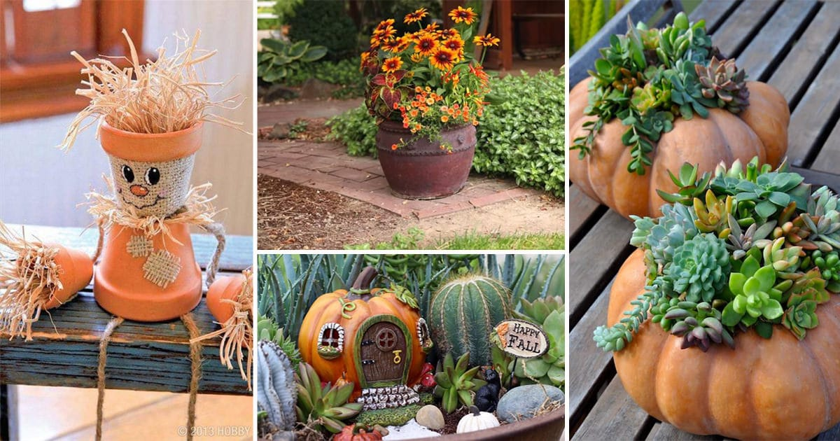 Amazing Fall Garden Ideas Part - 14: Balcony Garden Web