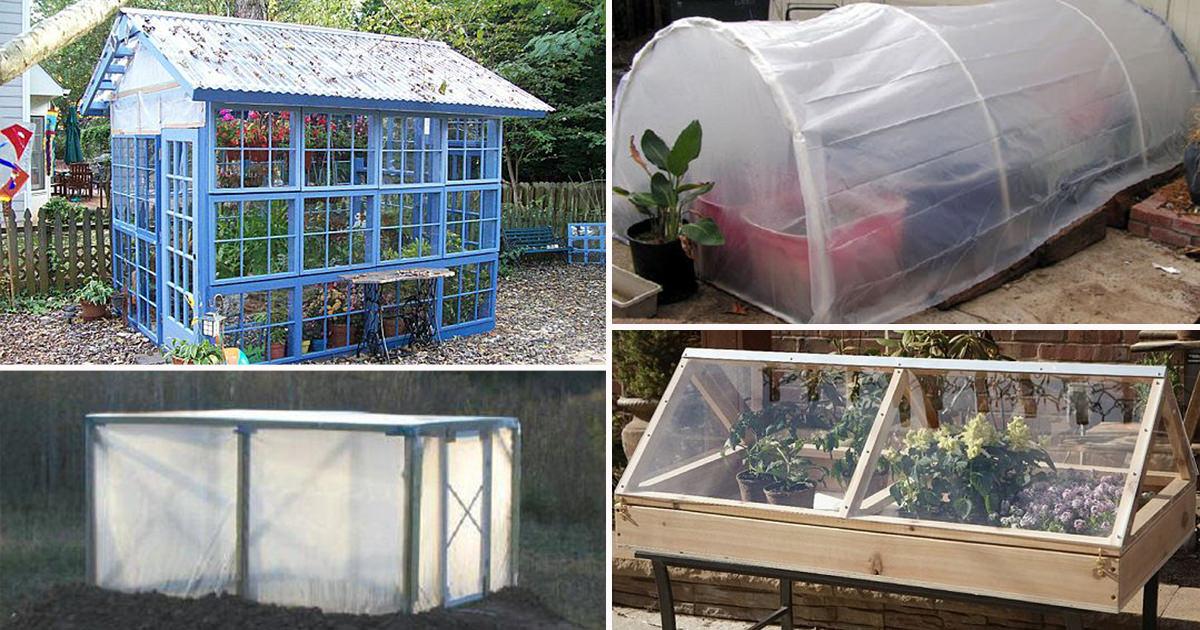 43 Budget Friendly Diy Greenhouse Ideas Balcony Garden Web