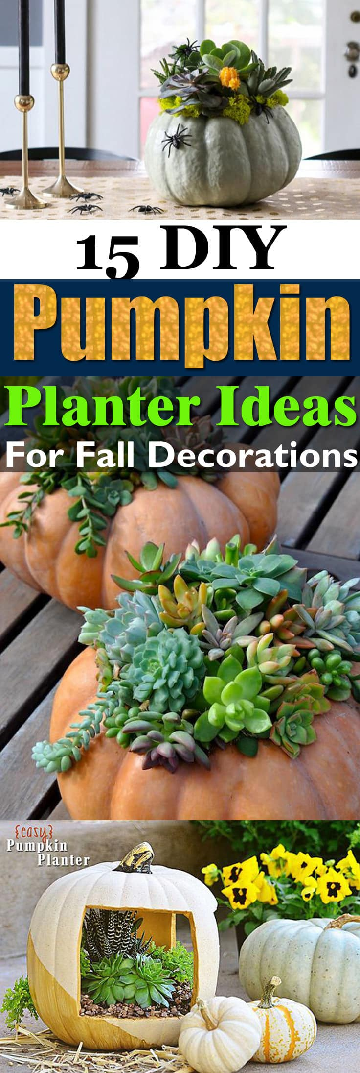Carve Pumpkins Or Else Use The Plastic Ones For These 15 Amazing DIY Pumpkin Planter Ideas