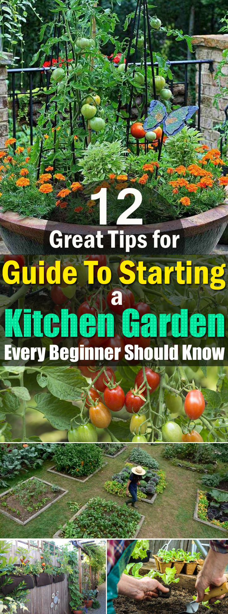 Check Out The 12 Best Beginner Tips, If Youu0027re Starting A Kitchen Garden