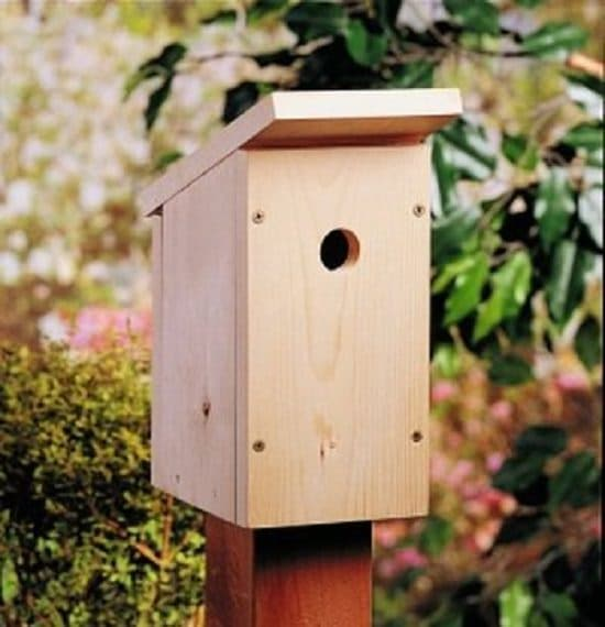 28 best diy birdhouse ideas with plans and tutorials for Simple houses to build