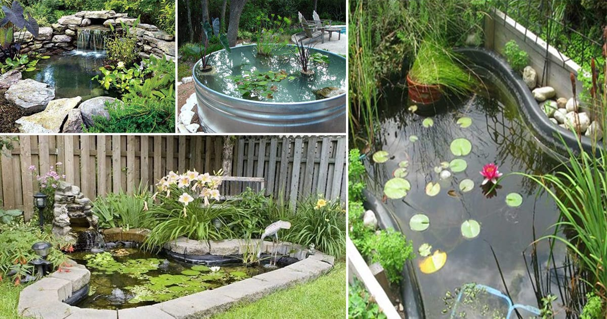 21 diy water pond ideas diy water gardens for backyards for Ideas for backyard gardens