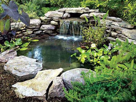 1. DIY Backyard Pond