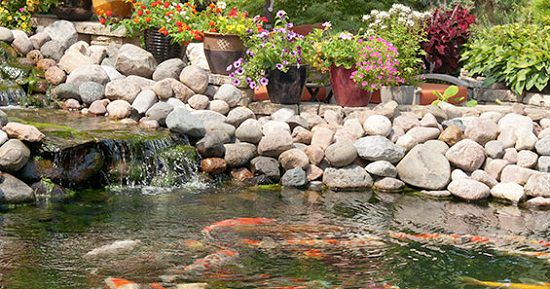 21 DIY Water Pond Ideas   DIY Water Gardens For Backyards ...