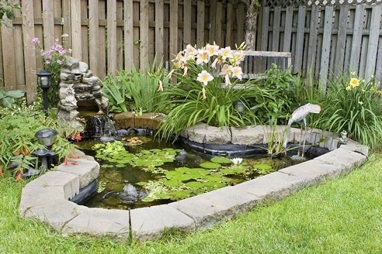 DIY Backyard Pond Idea