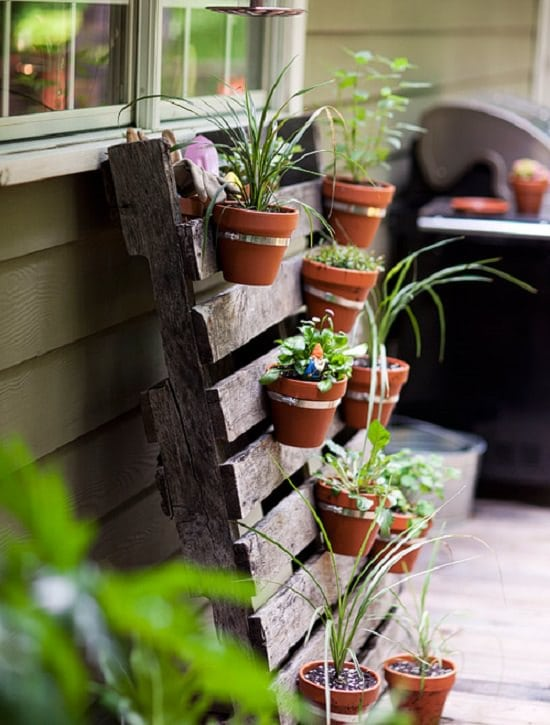 You Can Secure Your Terracotta Or Plastic Pots On The Pallet Board An Innovative Way To Upcycle And Get More Vertical Space For Gardening