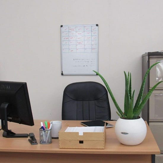 The Plants From The Aloe Genus, Especially The Aloe Vera Is Undoubtedly The  Best Choice For Your Office Desk. Itu0027s A Low Maintenance Plant And Has A  Proven ...