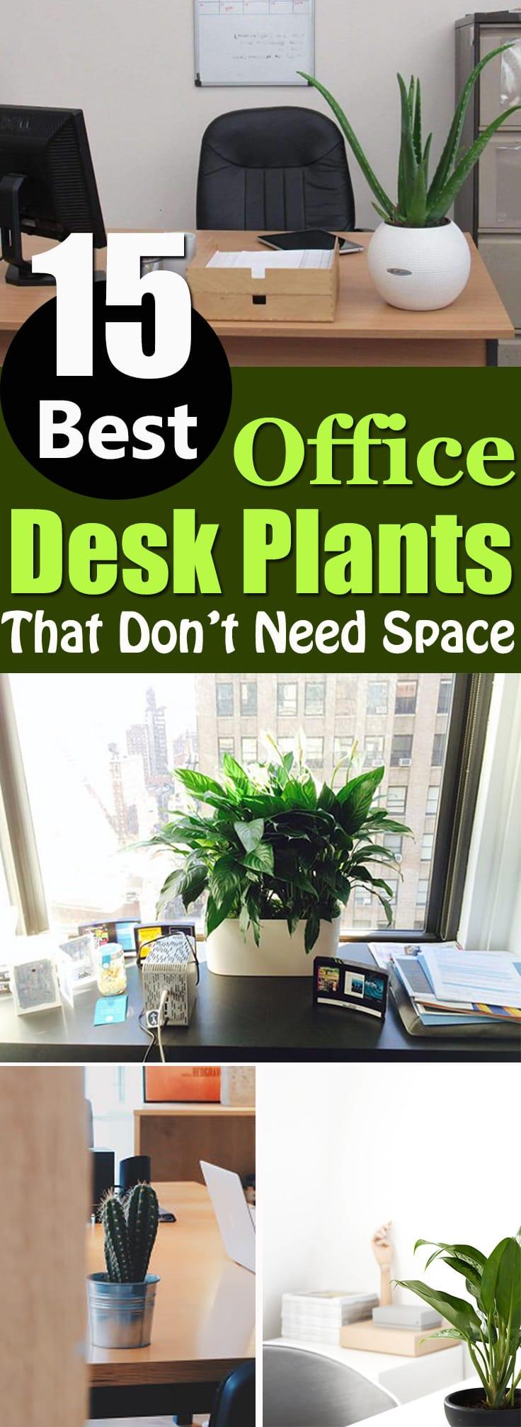 Diy Indoor Herb Garden Planter