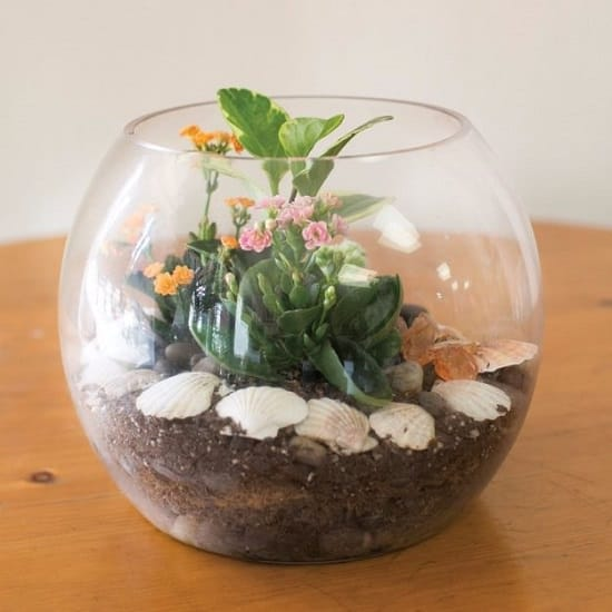 53 Diy Terrarium Ideas That Will Blow Your Mind Away