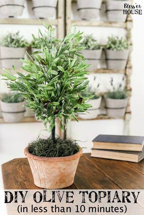 12 Diy Container Topiary Ideas To Beautify Your Home