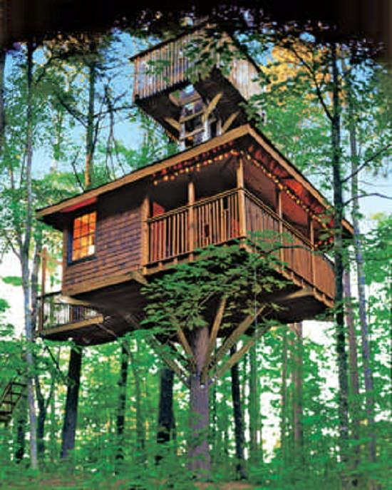 Over The Top Tree House