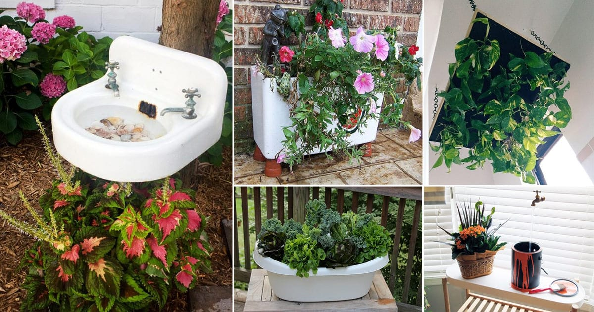11 Bizarre DIY Bathroom Items Ideas