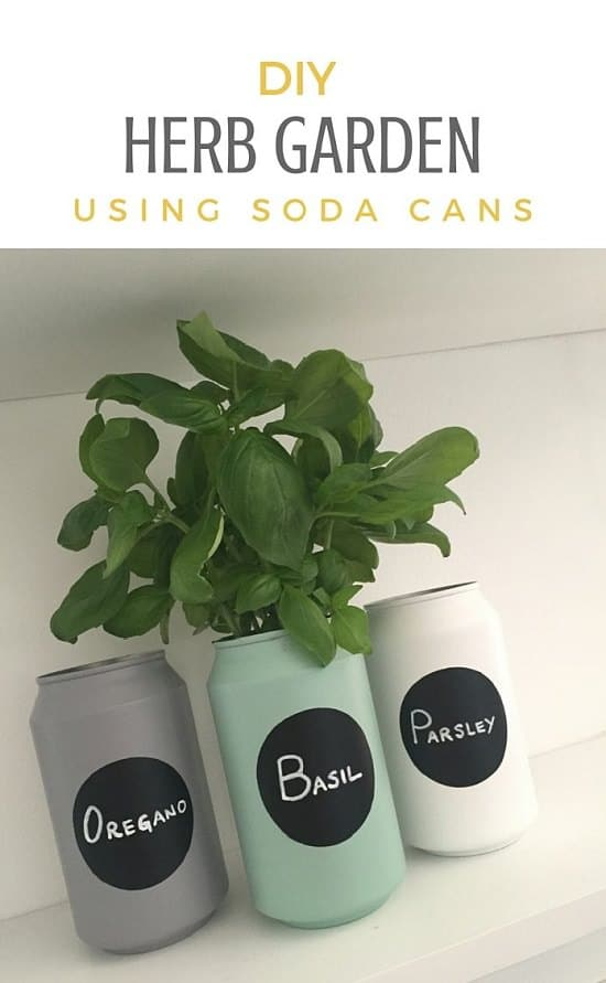 Charming Create A Herb Garden Out Of Soda Cans. All The Instructions Are Here!