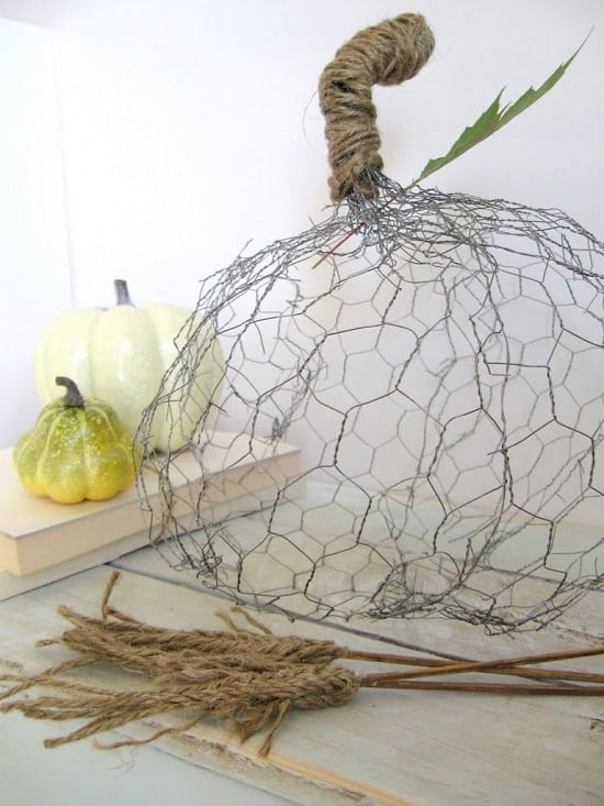 25 Absolutely Amazing DIY Chicken Wire Projects For The Garden ...