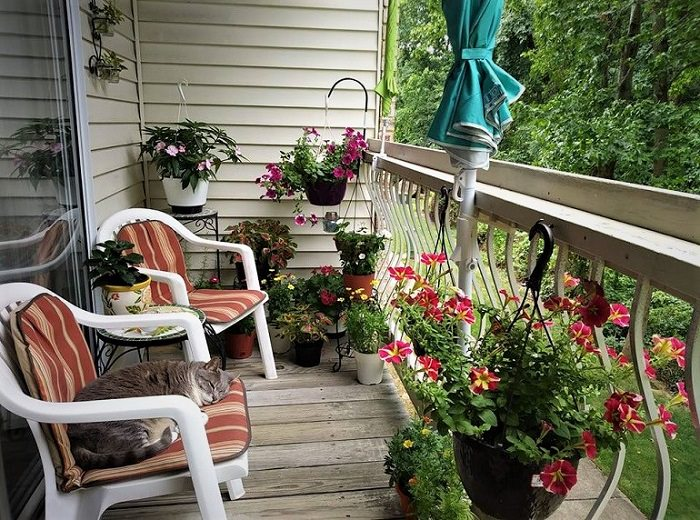 17 balcony garden pictures for inspiration from our readers
