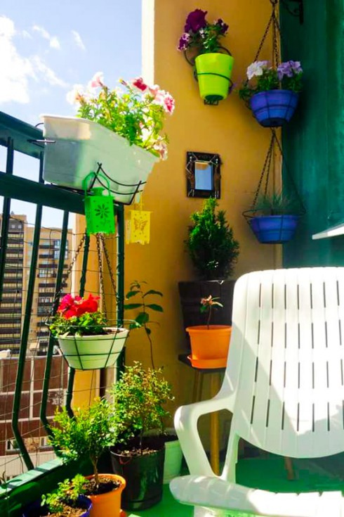 15 Balcony Garden Tips to Transform your Small Space on home cleaning tips, home theater tips, photography tips, herb gardening, home security tips, container gardening, gardening guides, home sports, home beauty tips, home exercise tips, home fitness, home safety tips, flower gardening, organic gardening, home remodeling tips, landscaping tips, home decor tips, real estate tips, home business tips, home projects, home diy tips, parenting tips, home garden tips, home recycling tips, vertical gardening, home design tips,