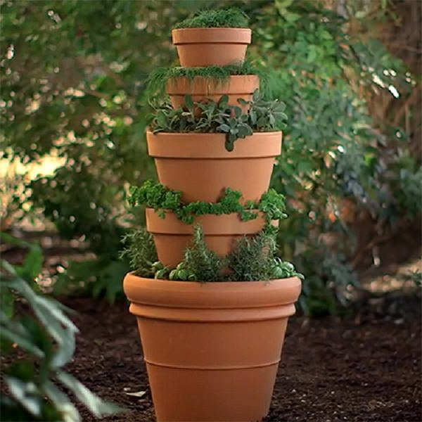 Kitchen Garden Pots: 8 Balcony Herb Garden Ideas You Would Like To Try