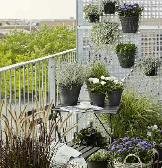 Great Lack Of Space In A Balcony Garden Is The Main Problem And You Need To Deal  With It Smartly, You Can Double Up The Planting Space If You Grow Things ...