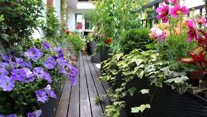 How To Make A Balcony Garden