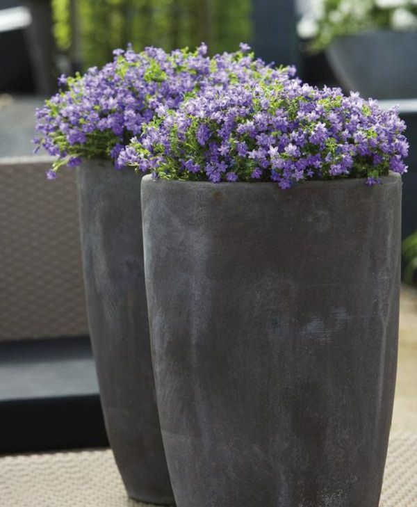 Delicieux 12. Balcony Planter Ideas (10)_mini