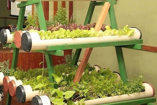 Vertical Balcony Garden Ideas