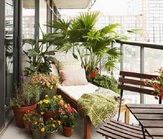 Grow Some Easy To Grow Plants And Low Care Ferns In Your Urban Dwelling,  This Will Give A Neat Look To Your Balcony Garden.