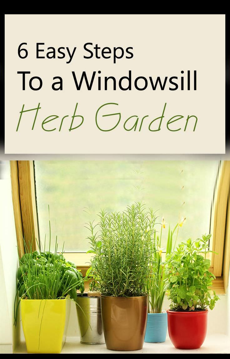 Learn how to make a windowsill herb garden, if you're short of space. The pleasure of harvesting your own herbs is immense. Check out!