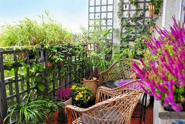 Balcony Garden Design Tips 4 Mini