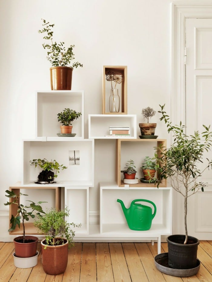 Interior Decoration: 99 Great Ideas To Display Houseplants