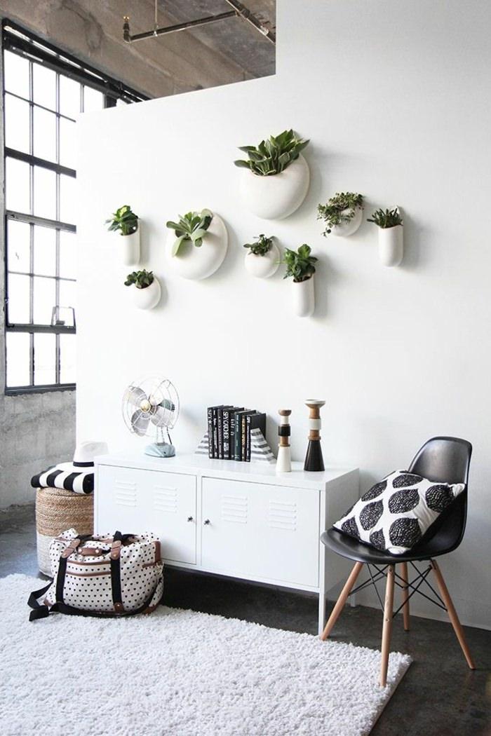 1. How To Display Houseplants