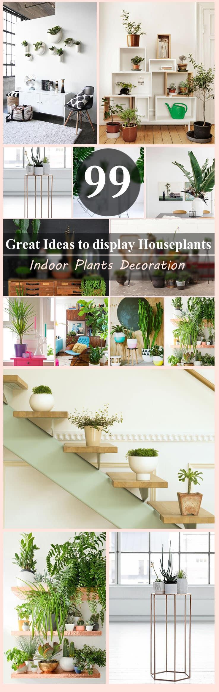 99 Great Ideas to display Houseplants   Indoor Plants ...