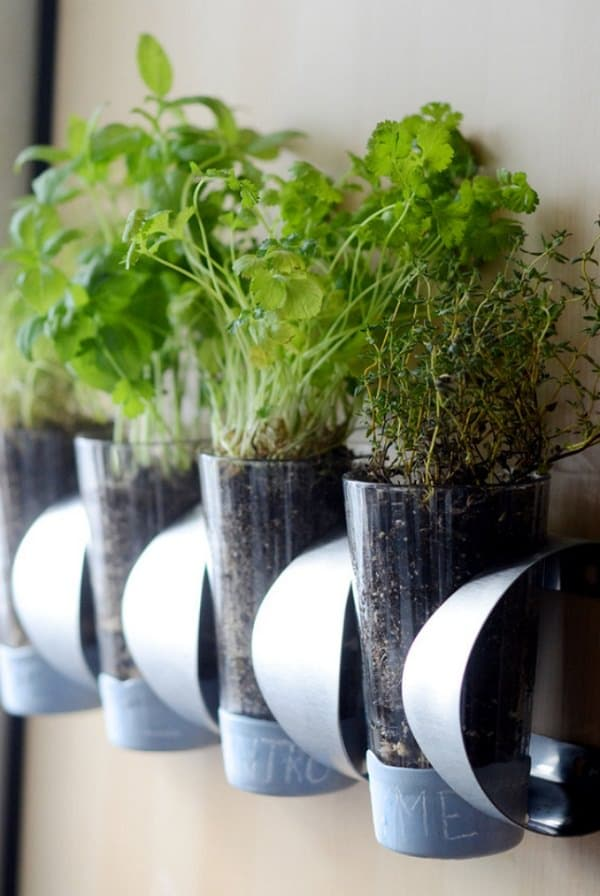 Mount An Ikea Wine Holder Horizontally And Plant Your Herbs Into Pint  Glasses.