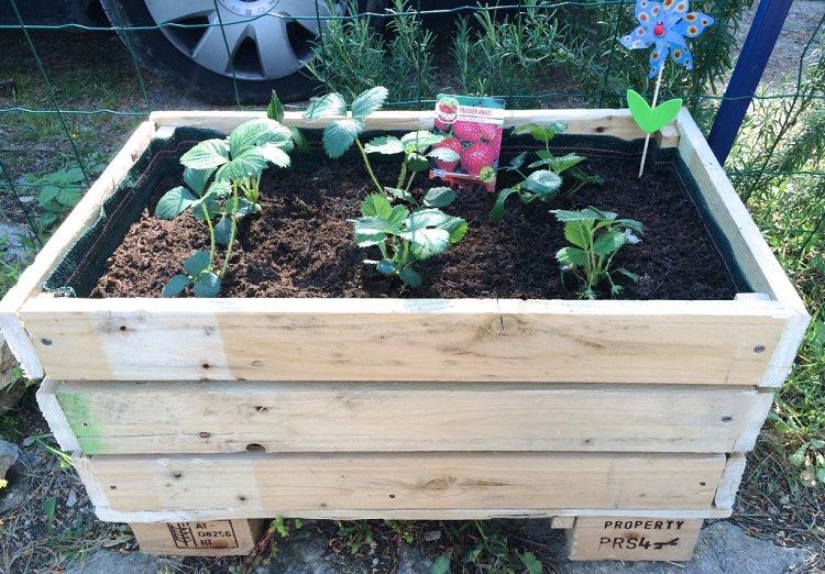 Diy Pallet Planter How To Make A Pallet Planter Balcony Garden Web