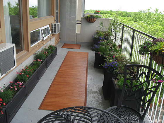 18 Balcony Gardening Tips to Follow before Setting up a ...