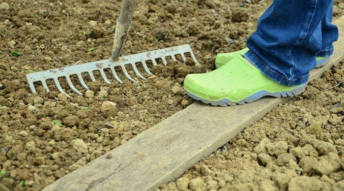 soil for vegetables 3 - Vegetable Garden Soil