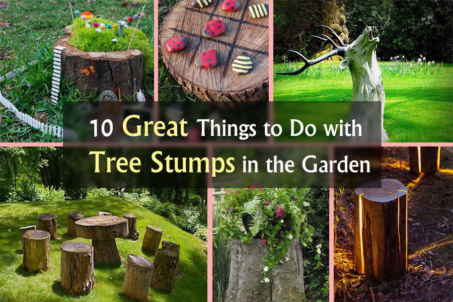 10 Amazing Tree Stump Ideas For The Garden Balcony Garden Web