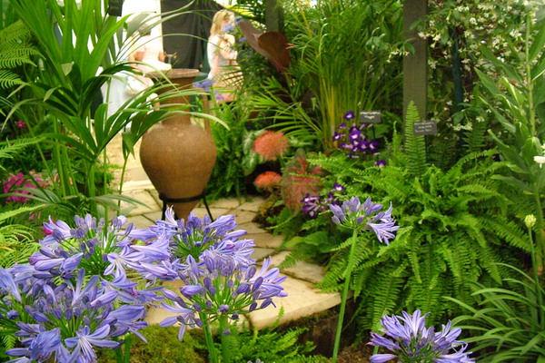 Shade Garden Ideas Perennials Backyards