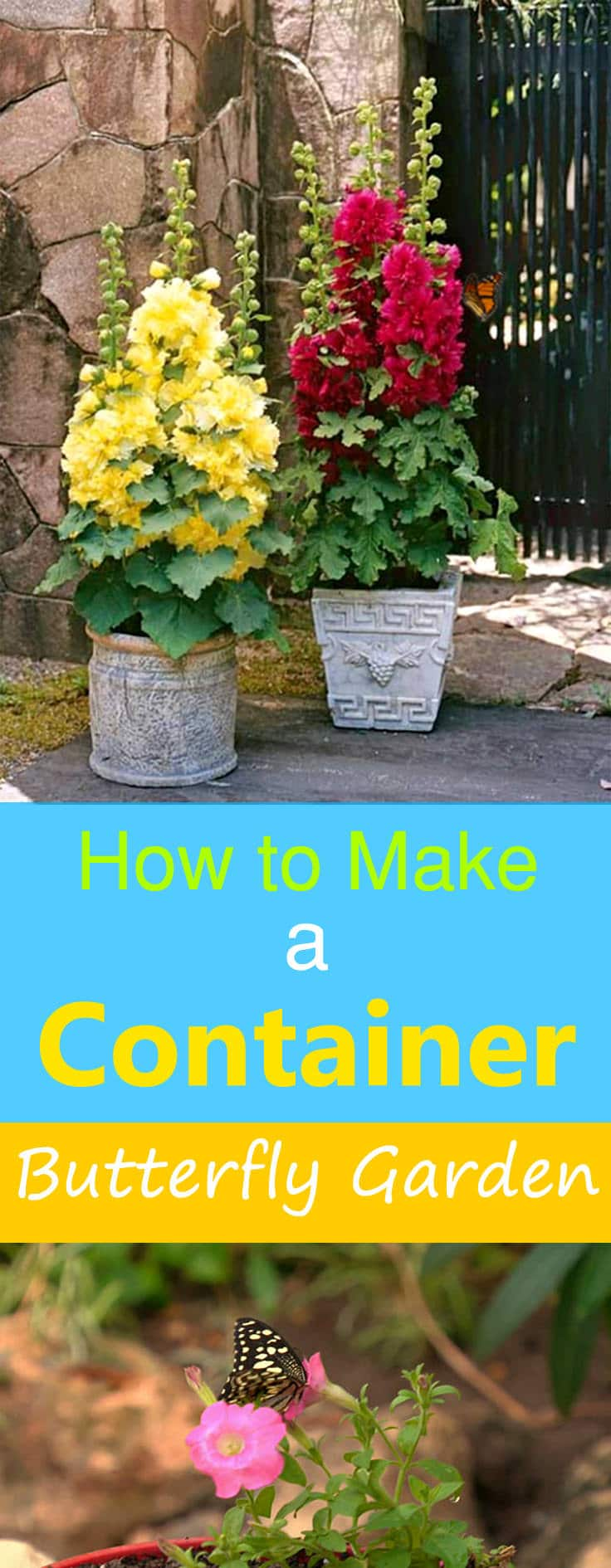 Even If Youu0027re Short Of Space, Making A Butterfly Garden In Containers Is