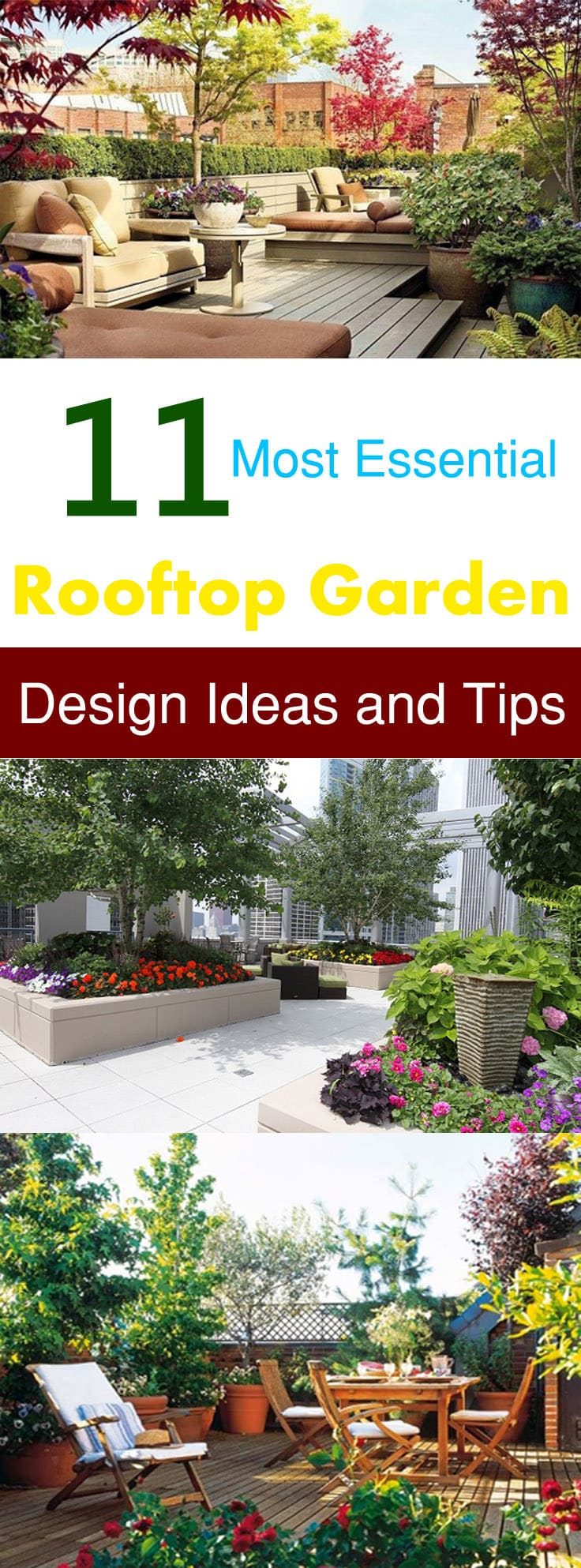 Tiny Home Designs: 11 Most Essential Rooftop Garden Design Ideas And Tips