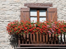 balcony flower garden 7