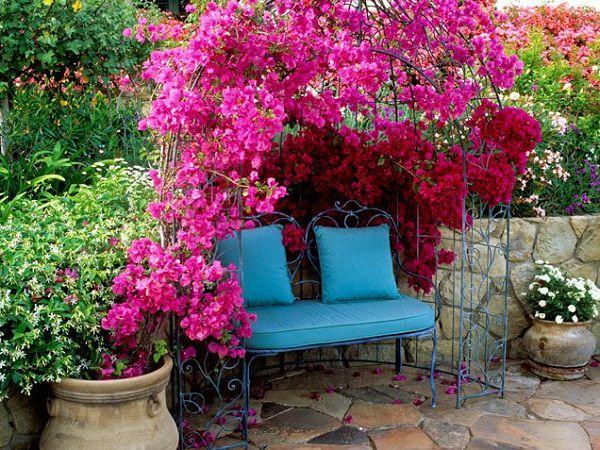Low Maintenance Shade Garden Ideas