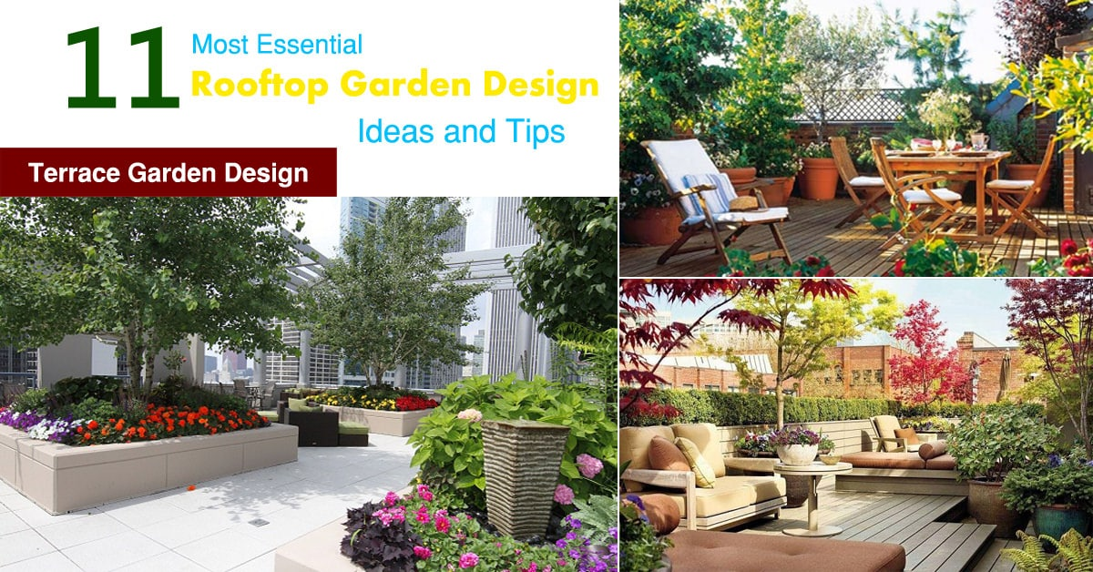Beautiful 11 Most Essential Rooftop Garden Design Ideas And Tips | Terrace Garden  Design | Balcony Garden Web