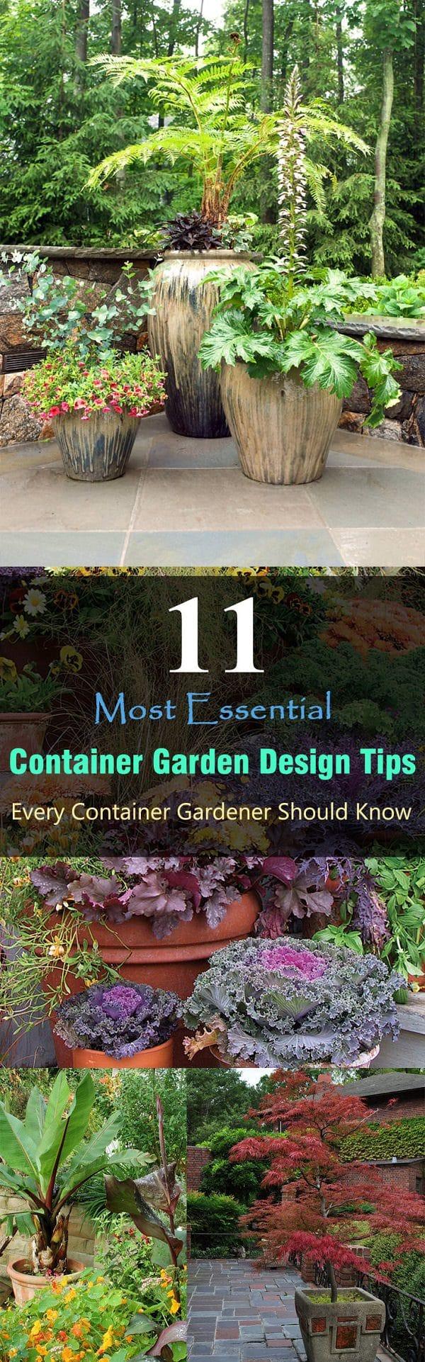 11 most essential container garden design tips