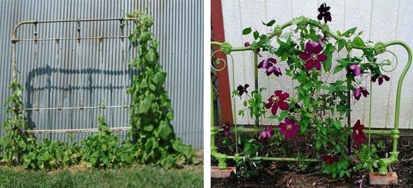 17 Best Upcycled Trellis Ideas For Garden Cool Trellis